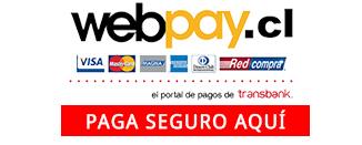 paga seguro con webpay