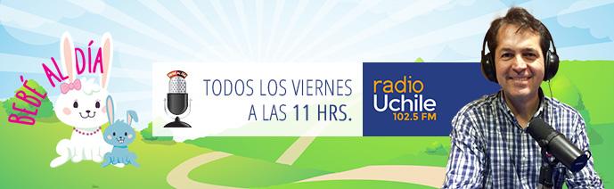 """Dr. Torres en Programa """"Bebé al Día"""" de Radio Universidad de Chile, Dr. Esteban Torres"""